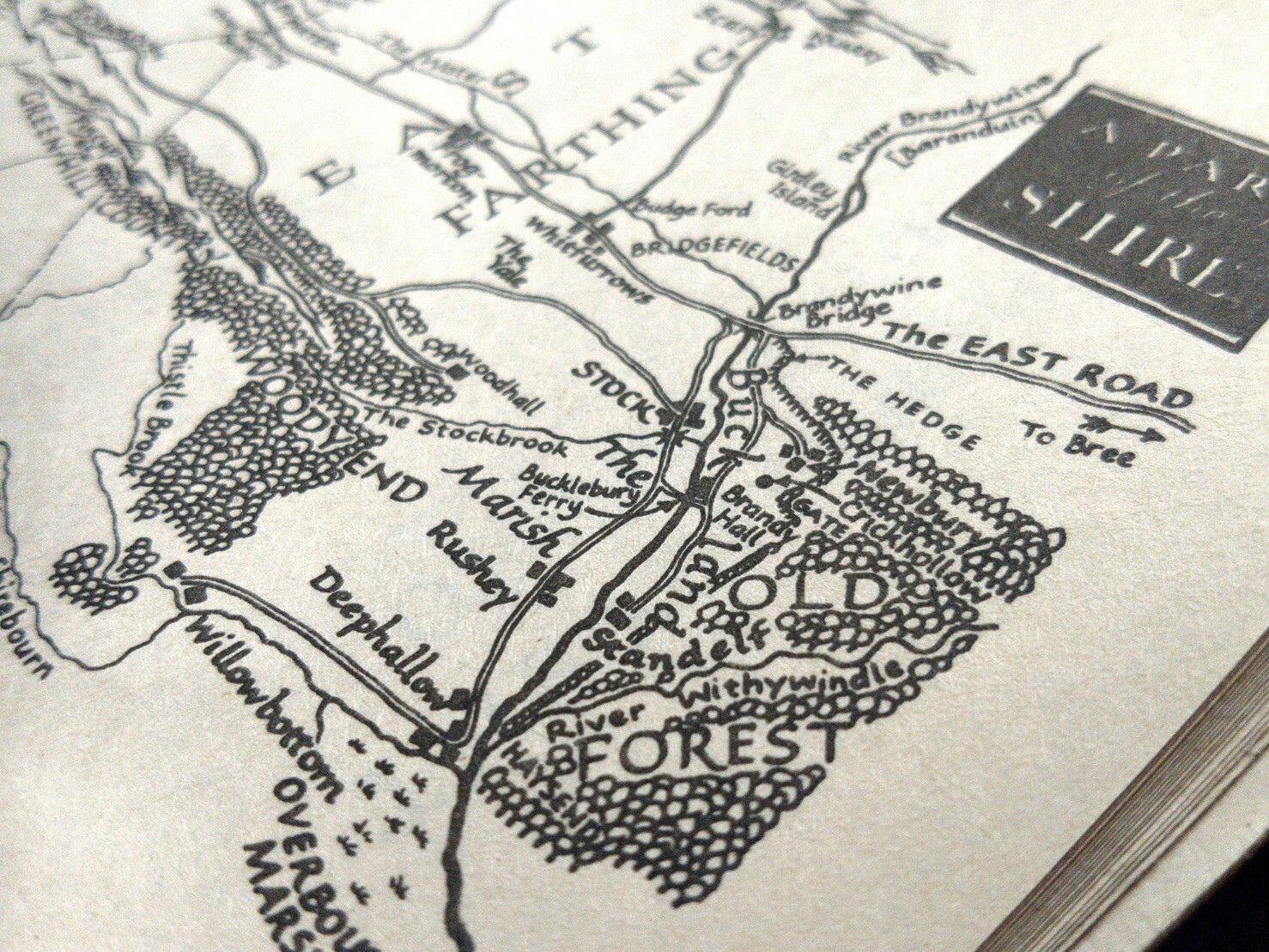 A map of the Shire, focused on Buckland and the Old Forest.